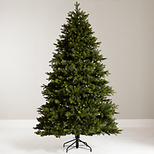 Buy Brunswick spruce 7ft with LED Indoor/Outdoor lights 480 with timer, classic white Online at johnlewis.com