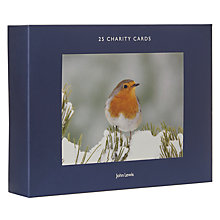 Buy John Lewis Photo Bumper Charity Christmas Cards, Pack of 25 Online at johnlewis.com