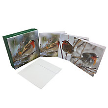 Buy Ling Designs Robins Christmas Cards, Box of 12 Online at johnlewis.com