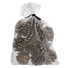 Buy John Lewis Ruskin House Pine Cones, Gold, Pack of 12 Online at johnlewis.com