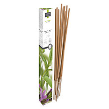Buy Esteban Garden Verveine Douce Incense Sticks Online at johnlewis.com