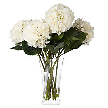 Buy Peony Hydrangeas In Twisted Vase, White Online at johnlewis.com