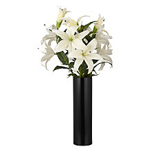 Buy Peony Lilies in Black Cylinder Vase Online at johnlewis.com