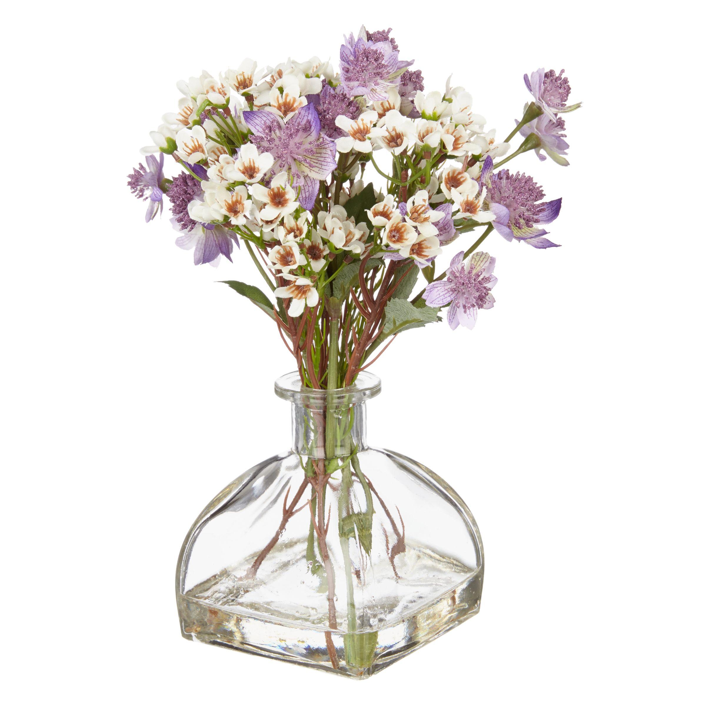 Peony Peony Purple Astranthia in Diffuser Vase