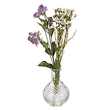 Buy Peony Astrantia and Wax Flower Bottle, Purple Online at johnlewis.com