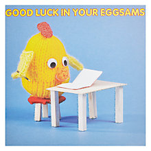 Buy Mint Good Luck in your Eggsams Card Online at johnlewis.com