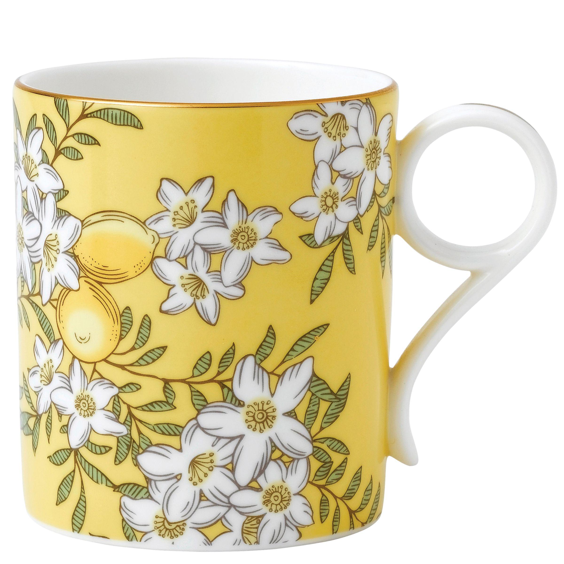 Wedgwood Wedgwood Tea Garden Lemon & Ginger Mug