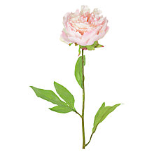 Buy Floralsilk Single Peony Stem, Pink Online at johnlewis.com