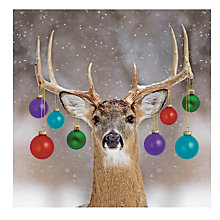 Buy Paperhouse Decorated Deer Charity Christmas Cards, Pack of 6 Online at johnlewis.com