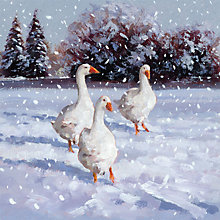 Buy Museums And Galleries Geese Charity Christmas Cards, Pack of 5 Online at johnlewis.com