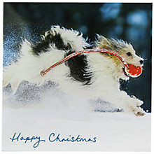 Buy Woodmansterne 'Dashing Through The Snow' Charity Christmas Cards, Pack of 5 Online at johnlewis.com