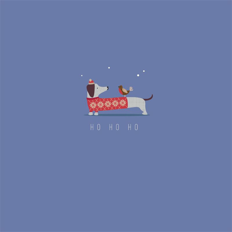 Art File Art File Dachshund And Robin Charity Christmas Cards, Pack of 6