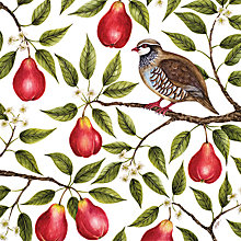 Buy Museums And Galleries Partridge In A Pear Tree Charity Christmas Cards, Pack of 5 Online at johnlewis.com
