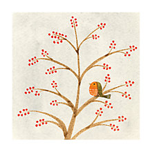 Buy Museums And Galleries Robin And Winter Berries Charity Christmas Cards, Pack of 8 Online at johnlewis.com