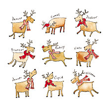 Buy Almanac Rudolph's Gang Charity Christmas Cards, Pack of 8 Online at johnlewis.com