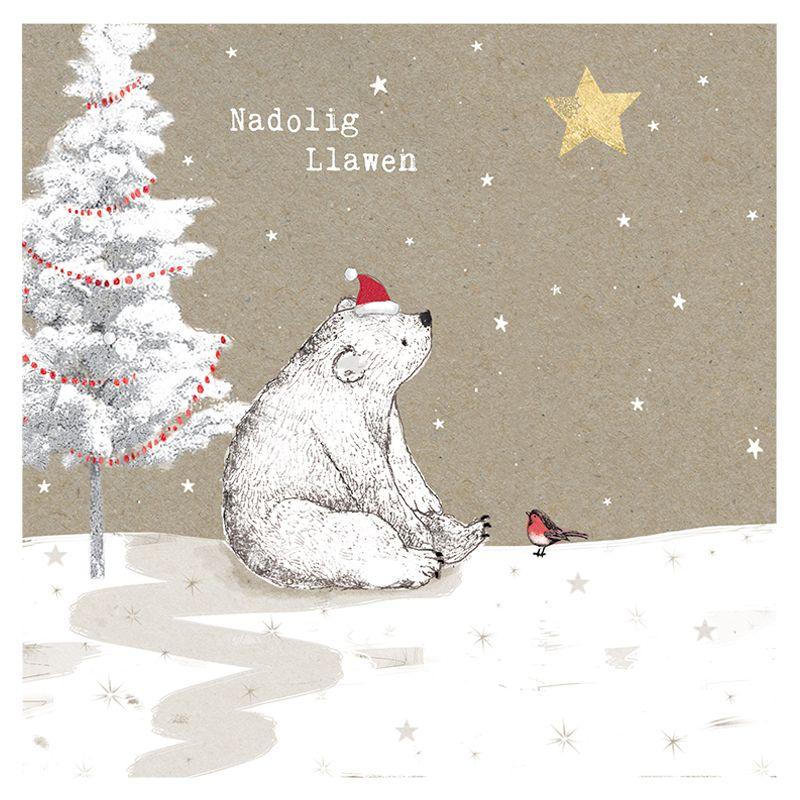 Hammond Gower Hammond Gower Welsh Bear & Robin Charity Christmas Cards, Pack of 5