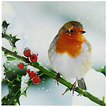Buy Woodmansterne Winter Perch Charity Christmas Cards, Pack of 5 Online at johnlewis.com