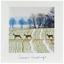 Buy Woodmansterne Winter At Blenheim Charity Christmas Cards, Pack of 5 Online at johnlewis.com