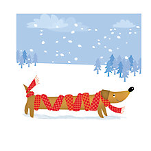 Buy Almanac All Wrapped Up Charity Christmas Cards, Pack of 8 Online at johnlewis.com
