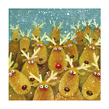 Buy Almanac Rudolph's Friends Charity Christmas Cards, Pack of 8 Online at johnlewis.com