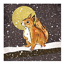 Buy Almanac Let It Snow Charity Christmas Cards, Pack of 8 Online at johnlewis.com