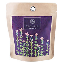 Buy Kew Royal Botanic Gardens Pocket Lavender Online at johnlewis.com