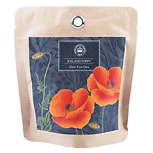 Buy Kew Royal Botanic Gardens Pocket Poppy Online at johnlewis.com