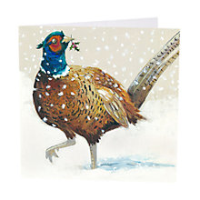 Buy Art Marketing Festive Pheasant Charity Christmas Cards, Pack of 6 Online at johnlewis.com