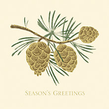 Buy UK Greetings Foiled Pinecones Charity Christmas Cards, Pack of 8 Online at johnlewis.com