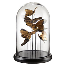 Buy John Lewis Shangri-La Golden Butterfly Cloche Online at johnlewis.com