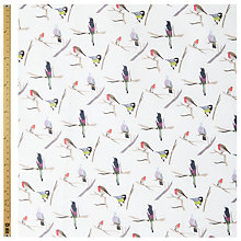 Buy John Lewis Winter Bird Collage Print, Blue Online at johnlewis.com