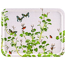 Buy Ary Geranium Rectangle Tray, FSC-certified (Birch) Online at johnlewis.com