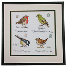 Buy Bothy Threads Garden Bird Counted Cross Stitch Kit Online at johnlewis.com