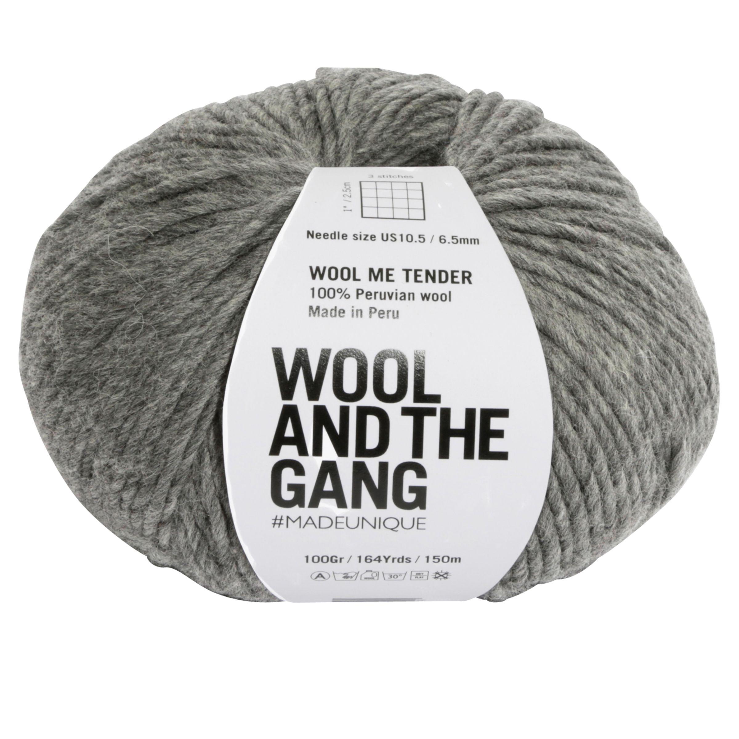 Wool and the Gang Wool and the Gang Wool Me Tender Chunky Yarn, 100g