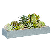 Buy John Lewis Fusion Cactus Succulent in Grey Square Pot, 22.5cm Online at johnlewis.com
