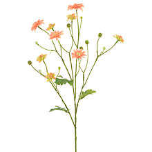 Buy Floralsilk Miniature Dahlia, Peach Online at johnlewis.com