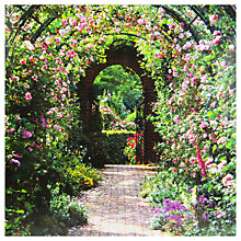 Buy Paperhouse Rose Arch Greeting Card Online at johnlewis.com