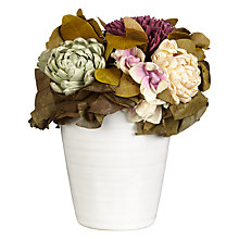 Buy John Lewis Relaxed Country Dried Flowers in White Pot Online at johnlewis.com