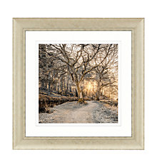 Buy Assaf Frank - Autumn Walk I Embellished Framed Print, 70 x 70cm Online at johnlewis.com