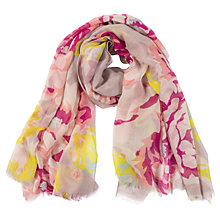 Buy Powder Rose Print Scarf, Multi Online at johnlewis.com
