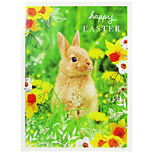 Buy Woodmansterne Bunny In Daffodils Easter Greeting Card Online at johnlewis.com