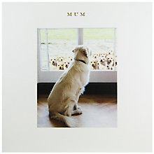 Buy Susan O'Hanlon Retriever Mother's Day Card Online at johnlewis.com