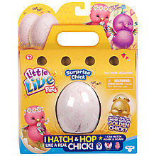 Buy Little Live Pets Surprise Chick Online at johnlewis.com