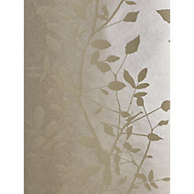 Buy Prestigious Textiles Dramatic Wallpaper Online at johnlewis.com