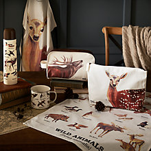 Buy Wild Animals Stag Gift Collection Online at johnlewis.com