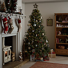 Buy Create the look: Christmas Past Online at johnlewis.com