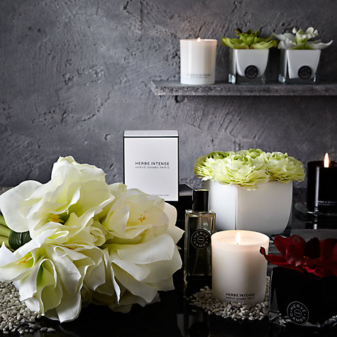 Buy Hervé Gambs Amaryllis Bouquet, White Online at johnlewis.com