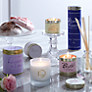 Buy Lily-Flame Candle in a Tin, Blush Online at johnlewis.com