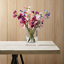 Buy Create Your Own Sweet Pea Arrangement Online at johnlewis.com