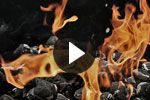 Cooking with gas barbecues - video